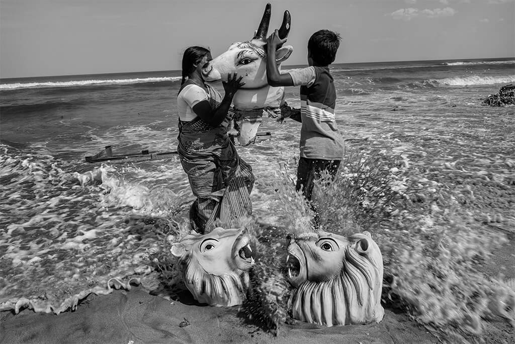 mother and his son carrying cow head in the beach and the two lion roaring.